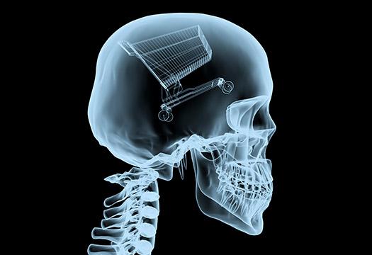anatomiya-potrebitelya-delim-podpischikov-na-segmentyi